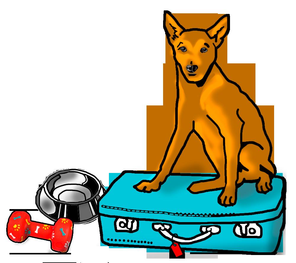 Resultado de imagen para de viaje con el perro